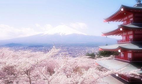 <纯品超值 日本经典6天>3-4星酒店,双温泉+双古都-东京一天自由活动!!