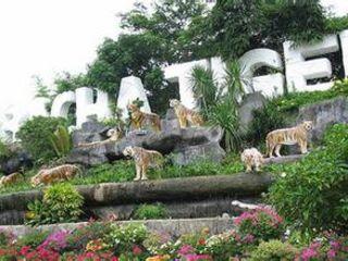 【常规泰国】曼谷、芭提雅5晚7天双岛游,参观东方公主号、梦幻巧克力小镇、龙虎园