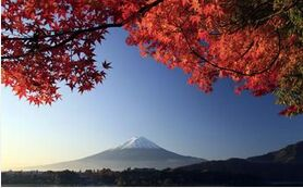 【日本】东京、箱根、大阪、京都、神户6日(4~5星&首尾市区酒店)