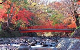 【日本】东京、箱根、大阪、京都、伊豆7日(5星温泉酒店3晚)