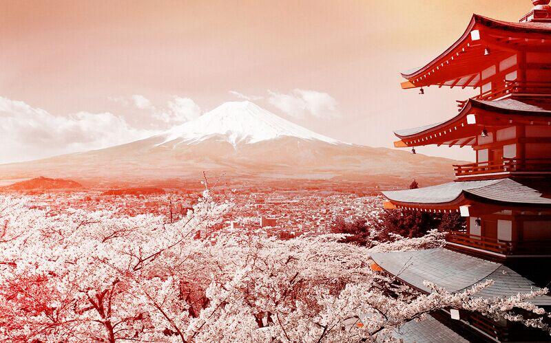 【北海道】东京、箱根、大阪、京都、北海道7日