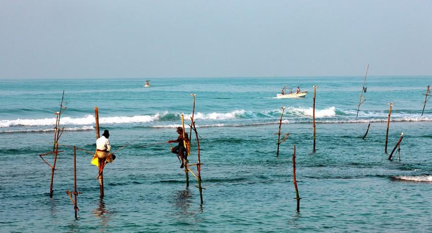 【斯里兰卡】包罗万象斯里兰卡8日全景之旅