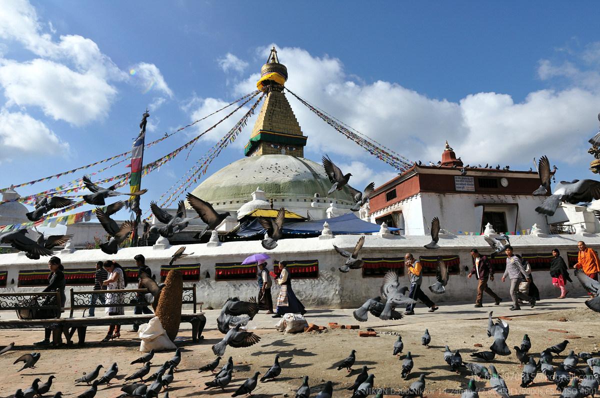 【尼泊尔】寻梦摄影9日