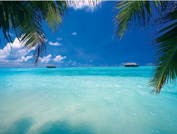 【大爱印度洋】斯里兰卡+马尔代夫 8 晚 10 日半自助游