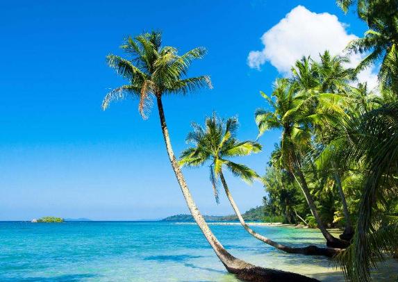 <超值>巴厘岛5晚7日游 直飞 四星酒店 2天出海游 珊瑚湾+观海龟+浮潜+滑水道